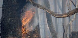 Not even desert safe from wildfire threat in blazing West
